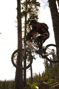 Mountain bikers flock to the resort for its challenging terrain and extensive trails.