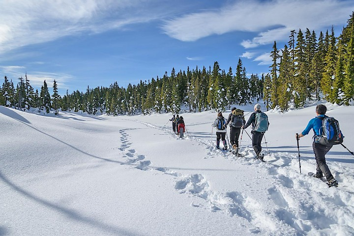 Group snowshoeing in Strathcona Provincial Park.