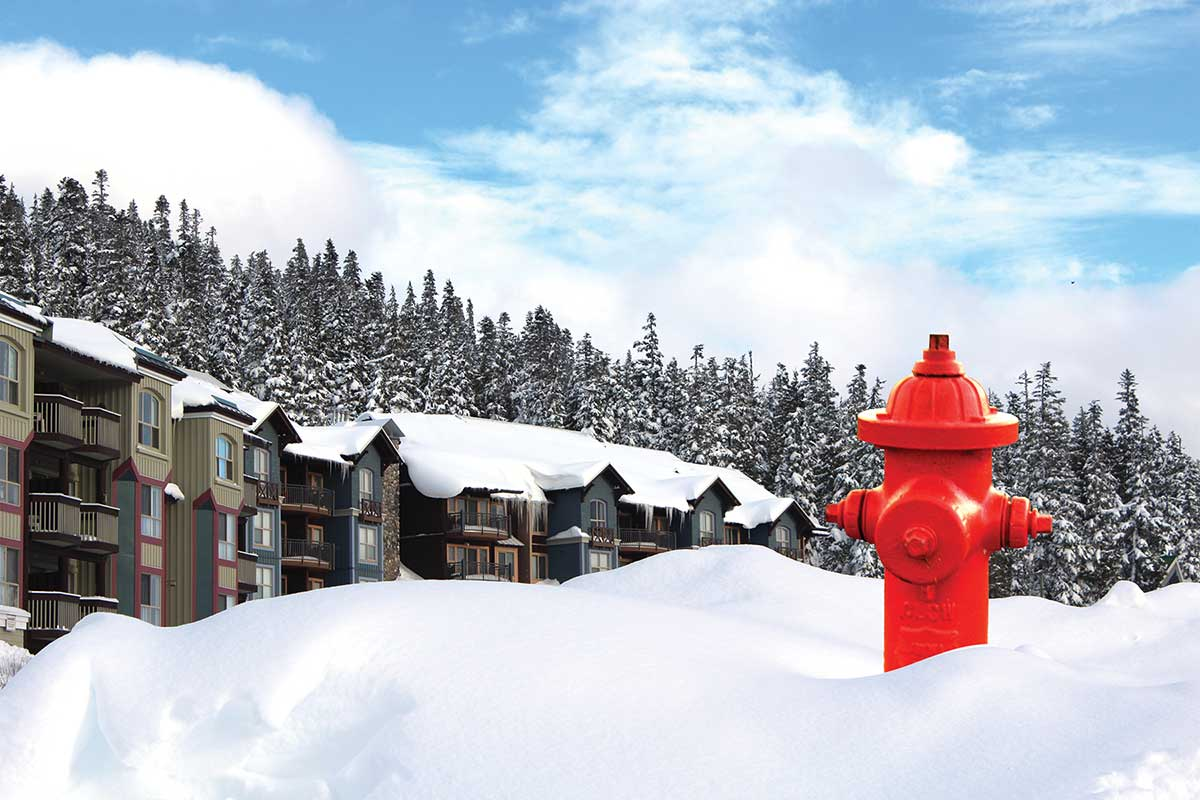 Property owners at Mount Washington Alpine Resort have voted in favour of establishing a fire protection service.